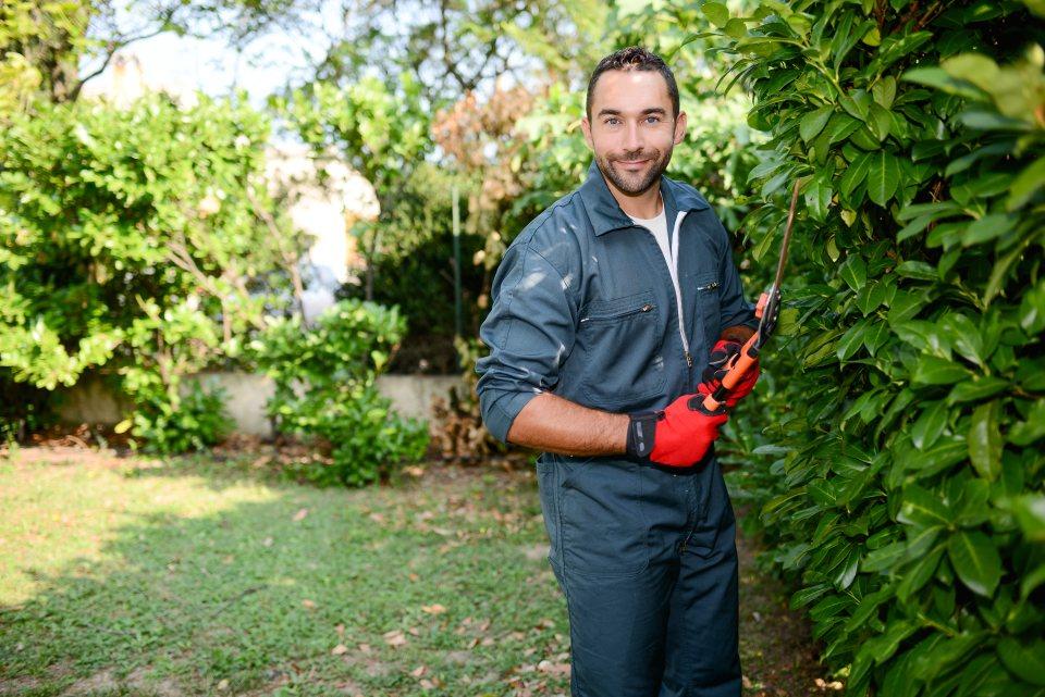 Gartenhelfer mit Heckenschere